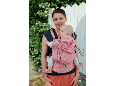Little Frog Ergonomic Carrier - Red Cube